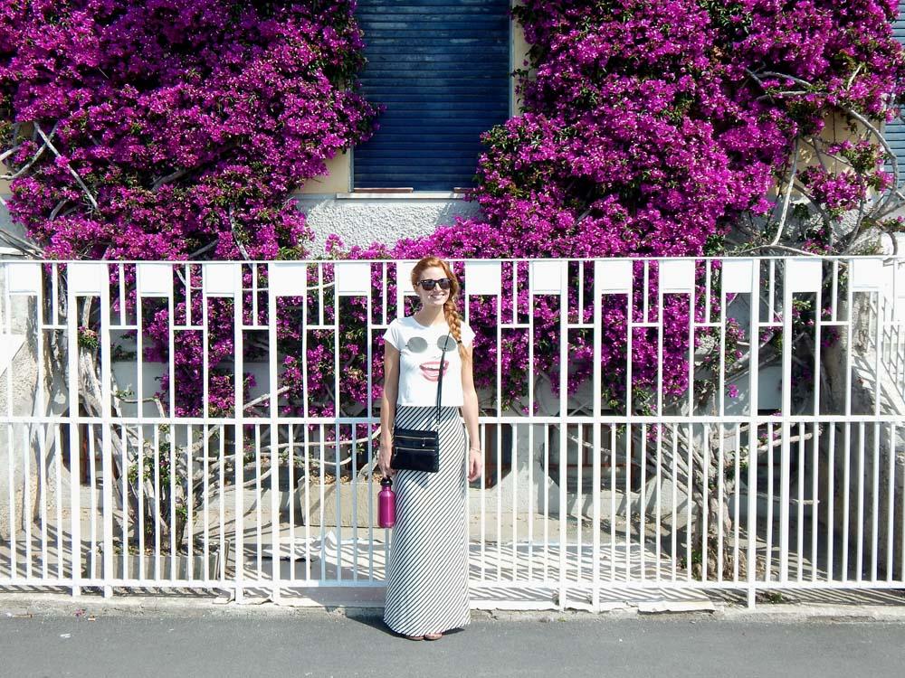 Monterosso Flowers