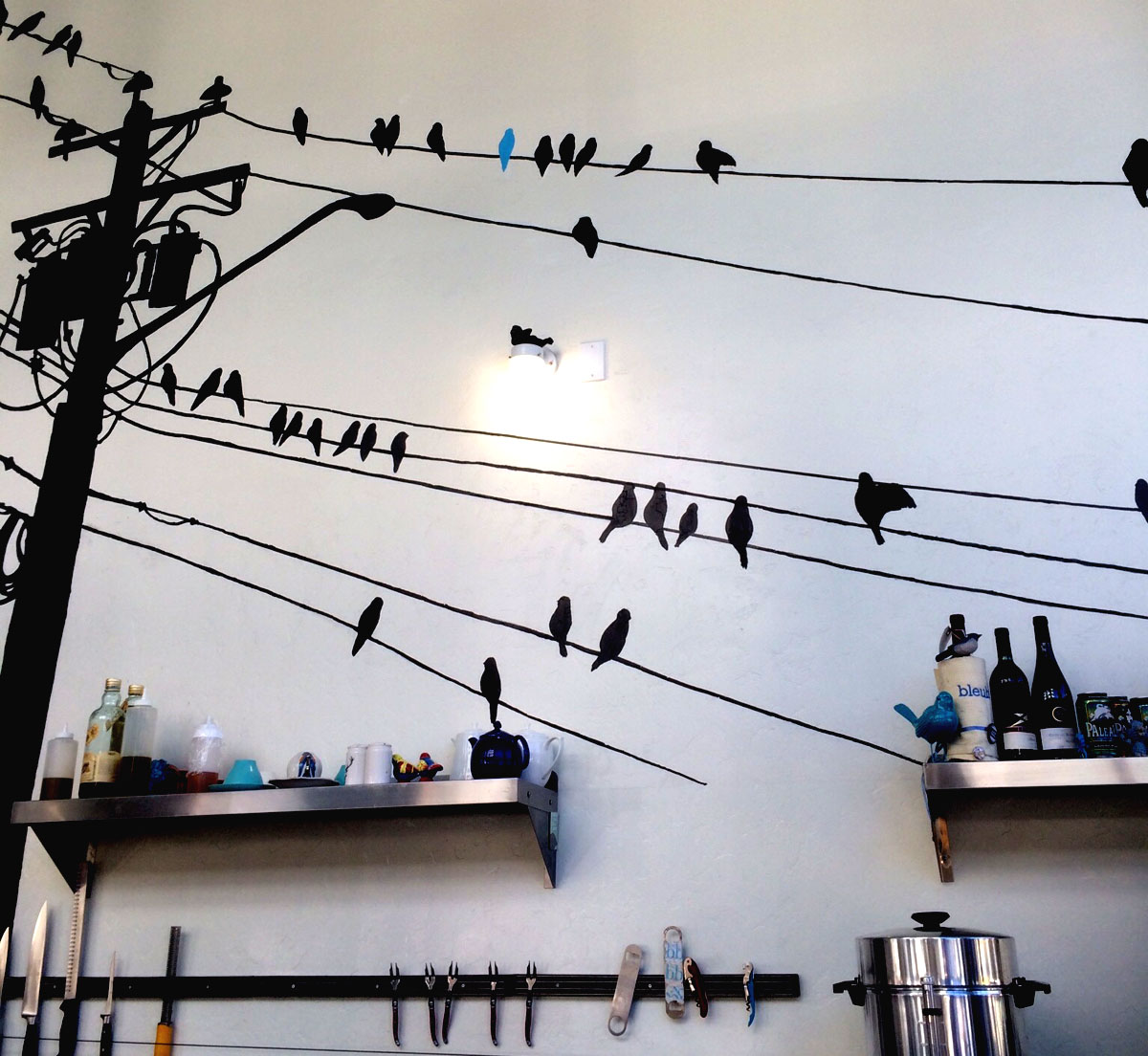 BlueBird-BleuBird-Boise