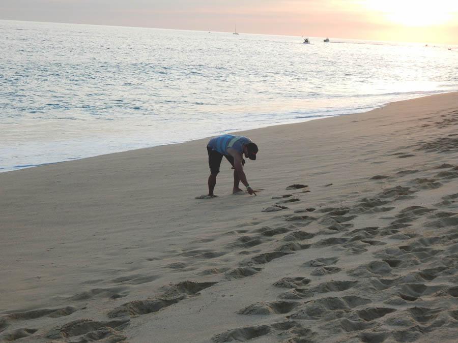 Mat Beach Cabo