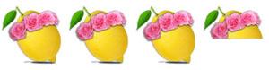 3 and a half Lemons Rating