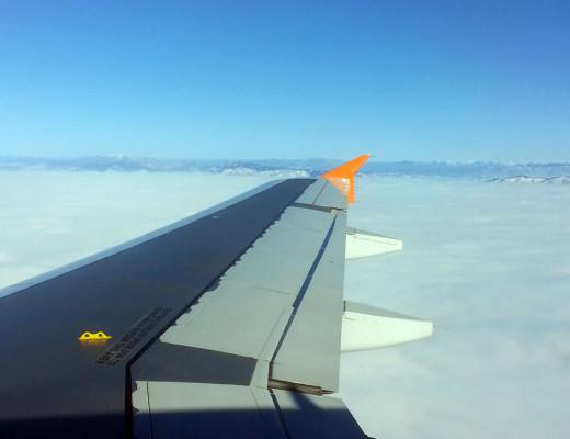 Maui Flight